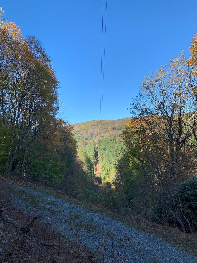 Rural, Secluded, and Private Wooded Tract in Blue Ridge