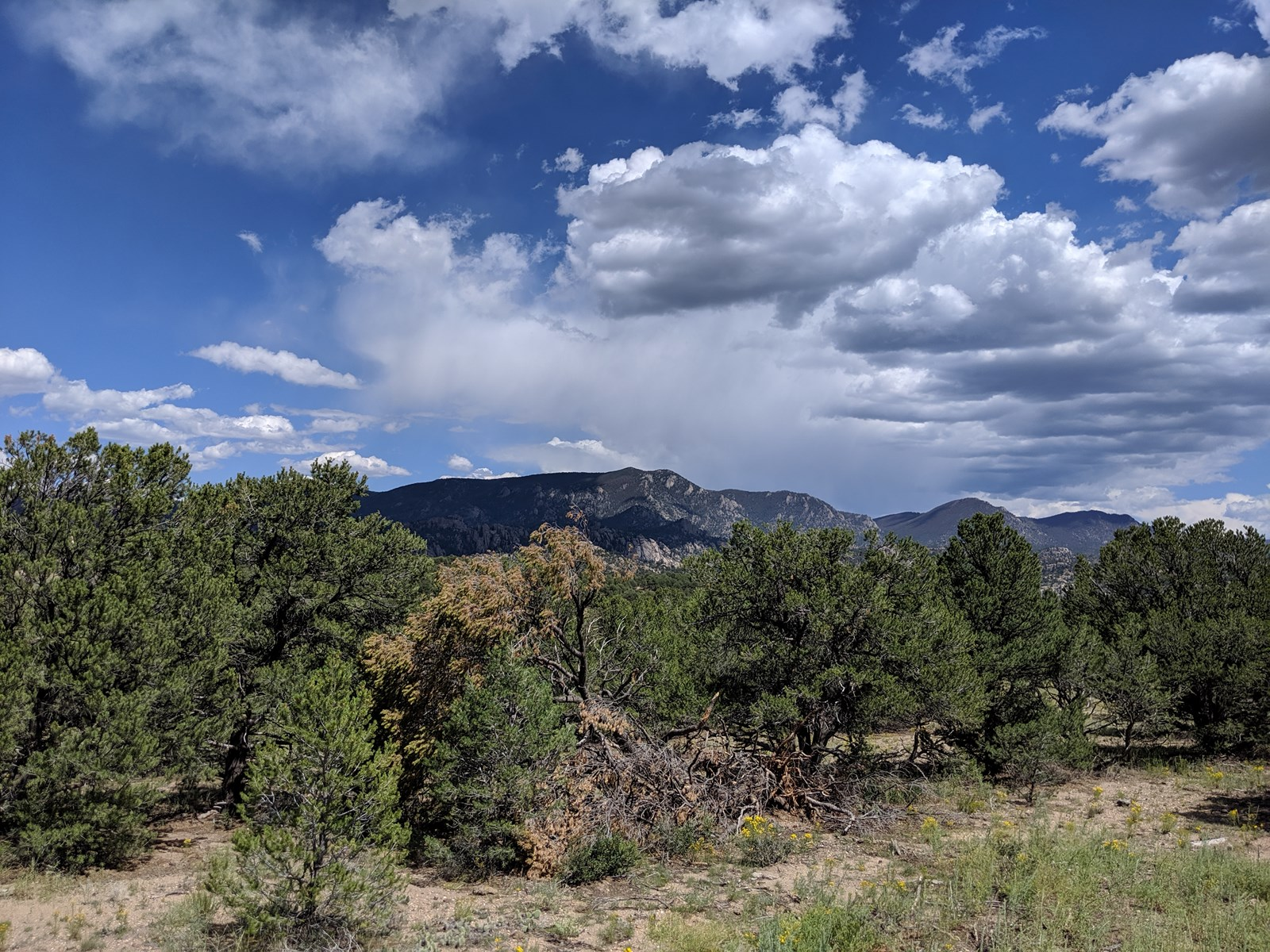Midway Buena Vista Salida CO land for sale Centerville Ranch