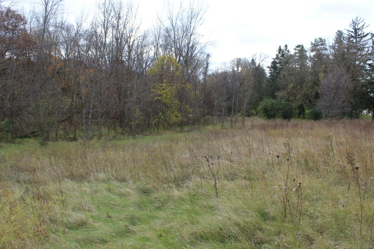 Wisconsin Land For Sale in Sheboygan County