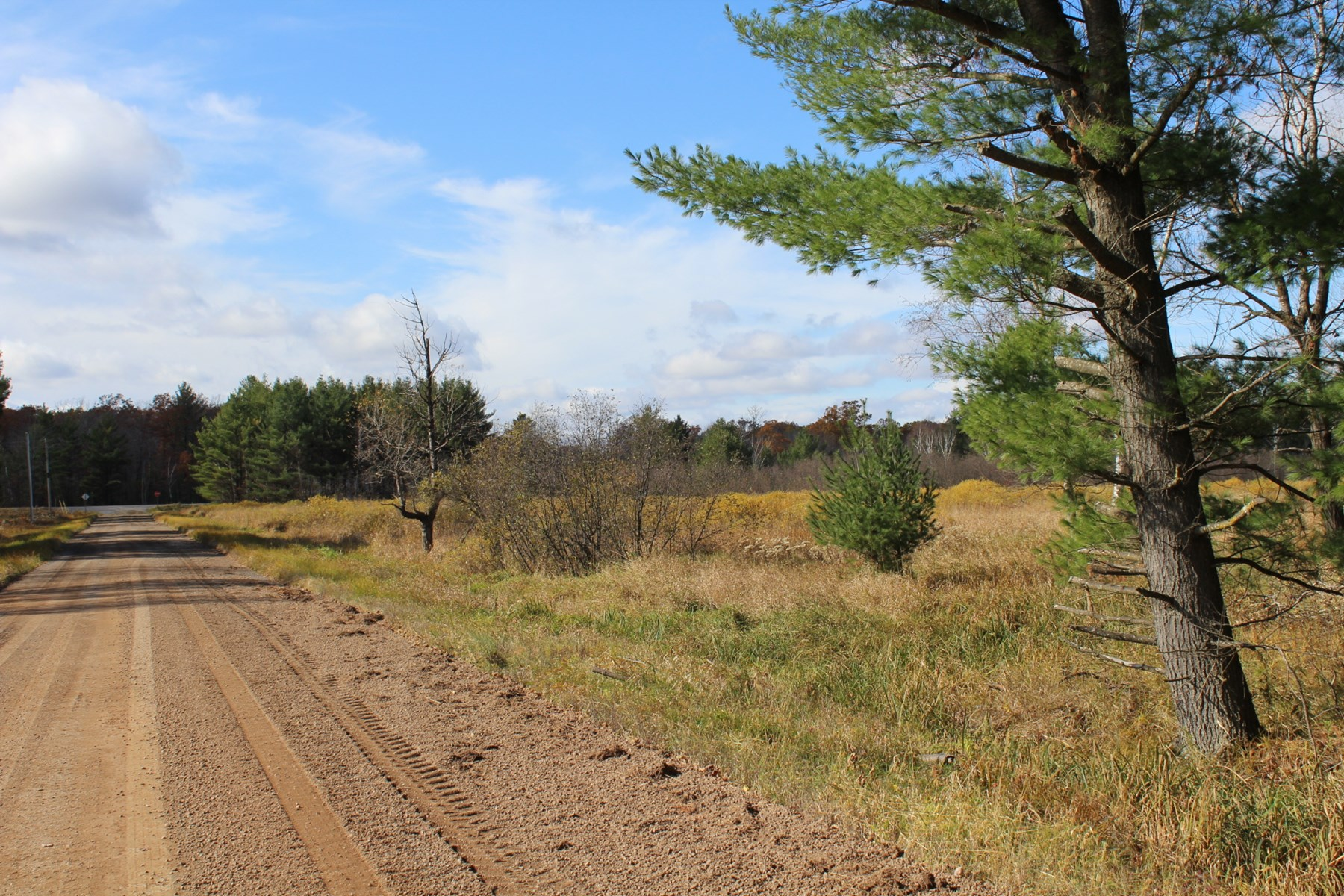 Great hunting land with building possibilities.