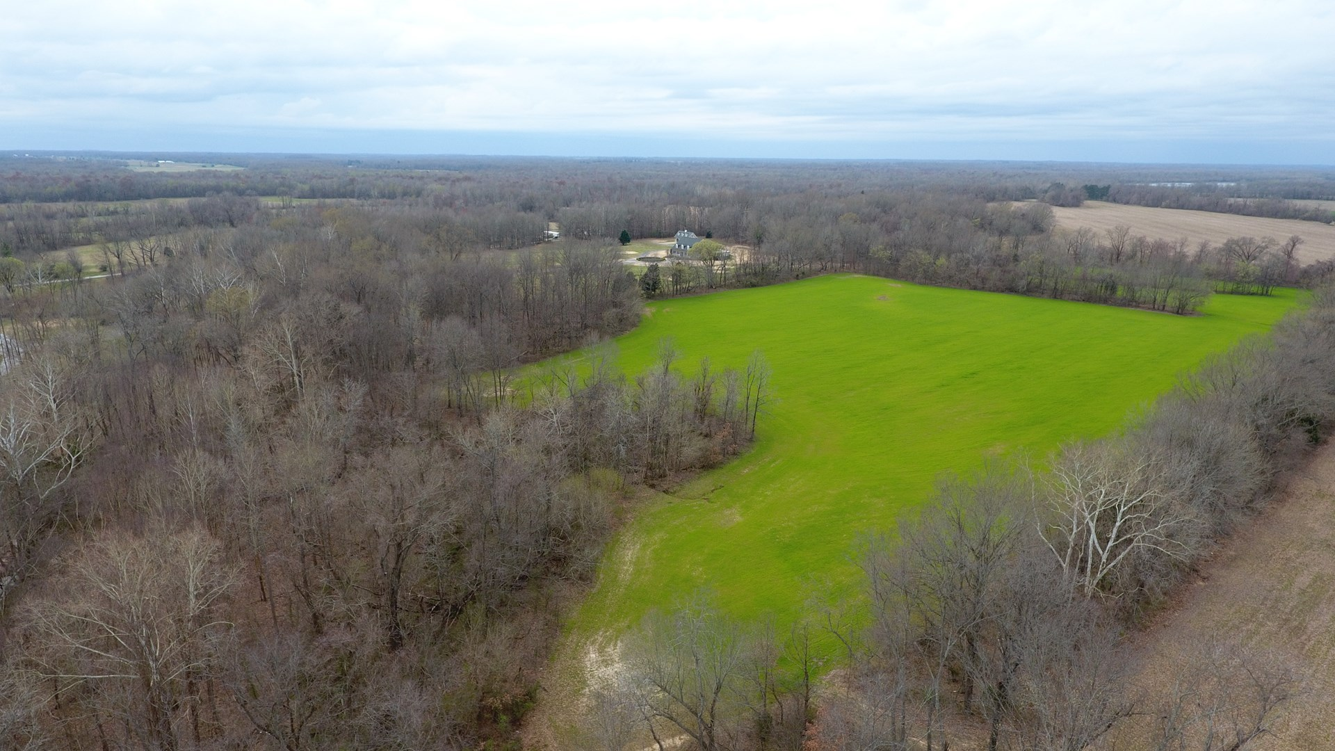 Farm For Sale near Jackson TN, Crops, Timber, Building Sites