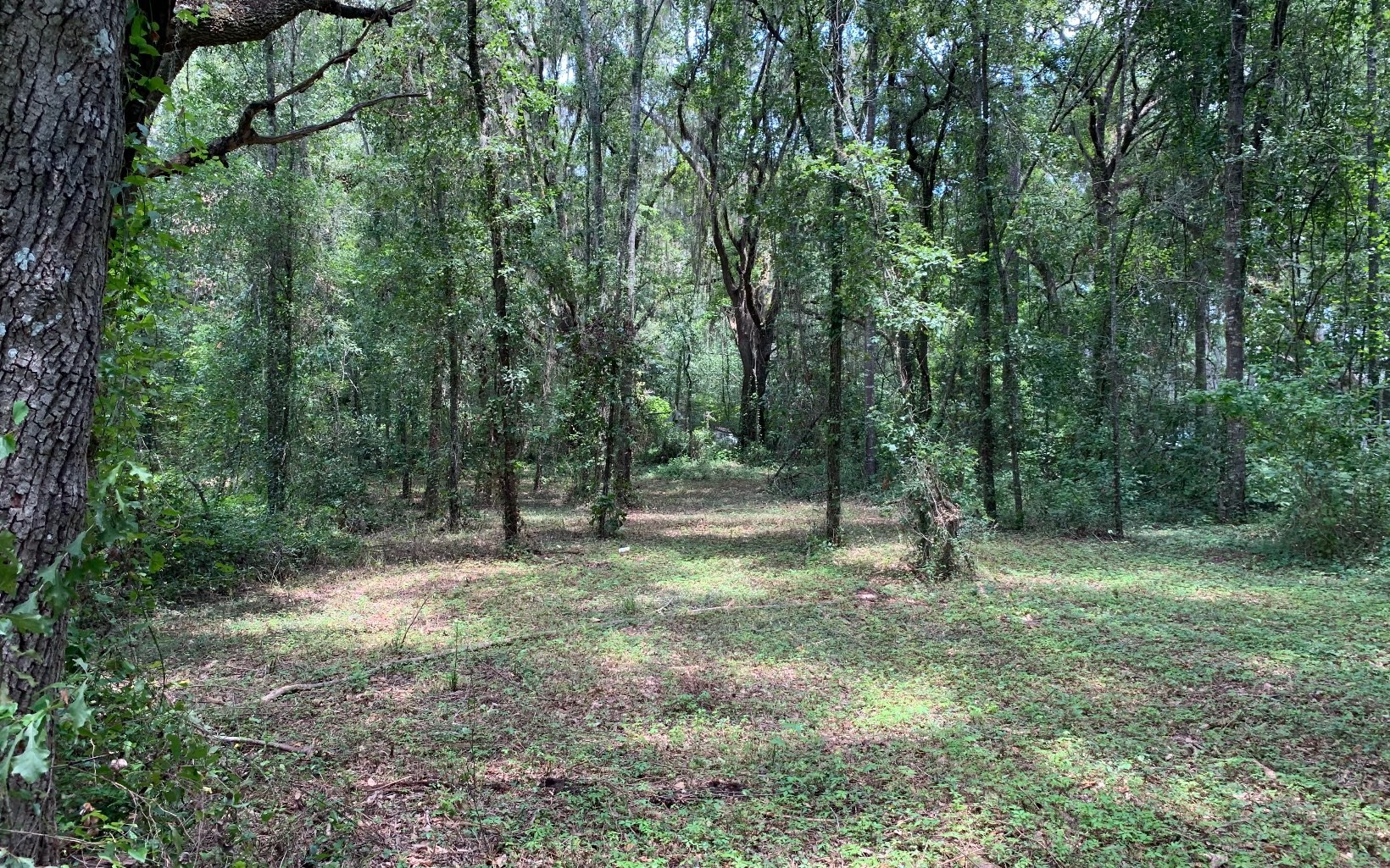 6.8 Acres with well/septic and power pole- No Restrictions!