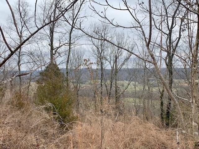 Land for sale, Burkesville, Kentucky