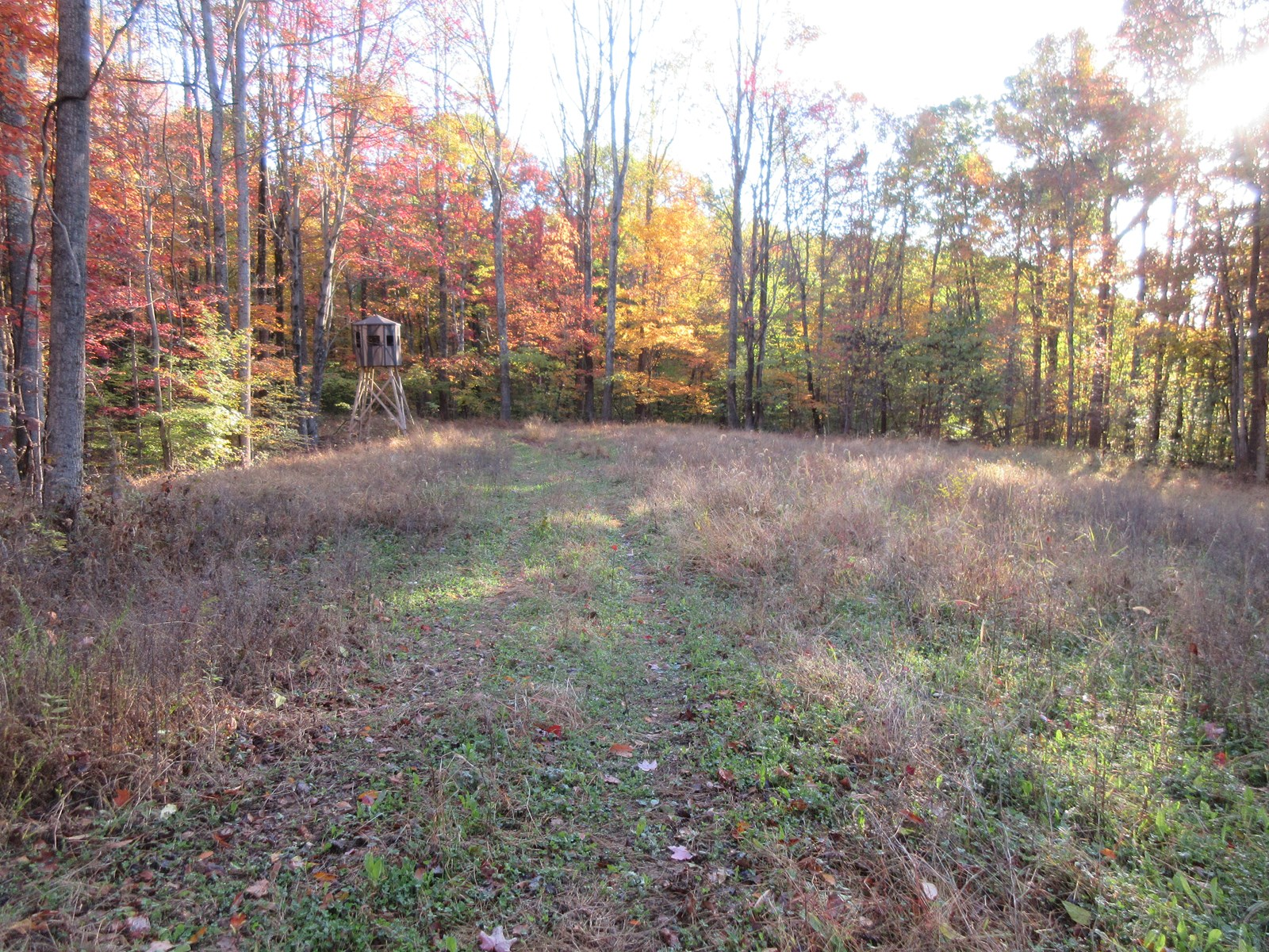 160 Wooded Acres Scenic Muskingum County