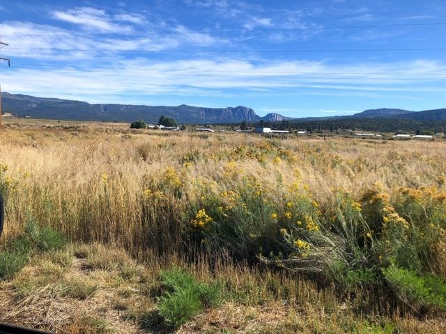 Land For Sale Tierra Amarilla NM