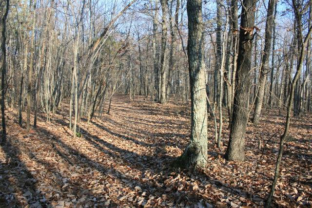 157 ACRES OF LAND FOR SELL IN FRANKLIN COUNTY, VA