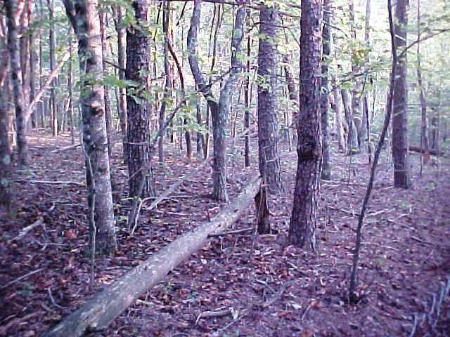1.2  ACRES OF LAND LOCATED IN HENRY COUNTY, VA