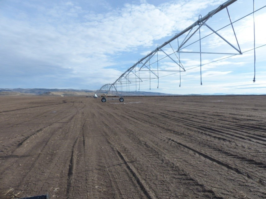 PIVOT IRRIGATED FARM - EAST OF BURNS OR