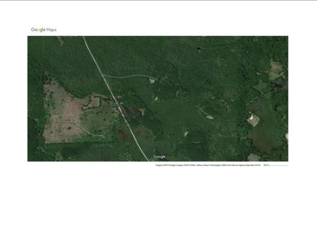Hunting Acreage for Sale Rogers City, Presque Isle Cty, MI