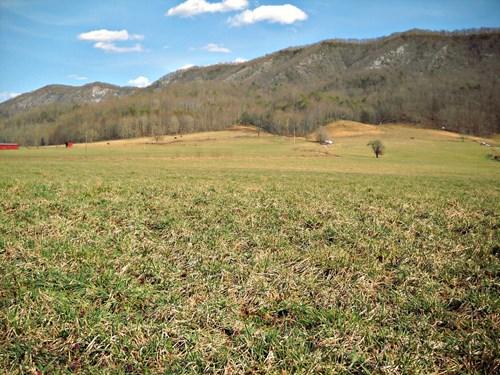 103.98 Acre Farm Land w/ Barn Tannersville VA Fencing Creek