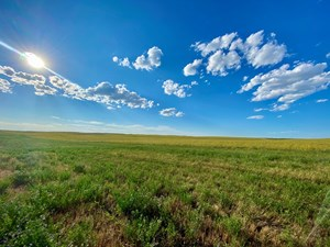369+/- ACRES ORGANIC FARM GROUND SOUTH PHILLIPS COUNTY MT