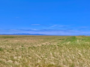 320+/- ACRES ORGANIC FARM GROUND SOUTH PHILLIPS COUNTY MT
