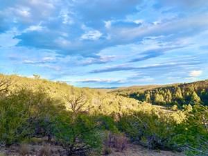 SACRAMENTO MOUNTAIN HUNTING LAND NEW MEXICO