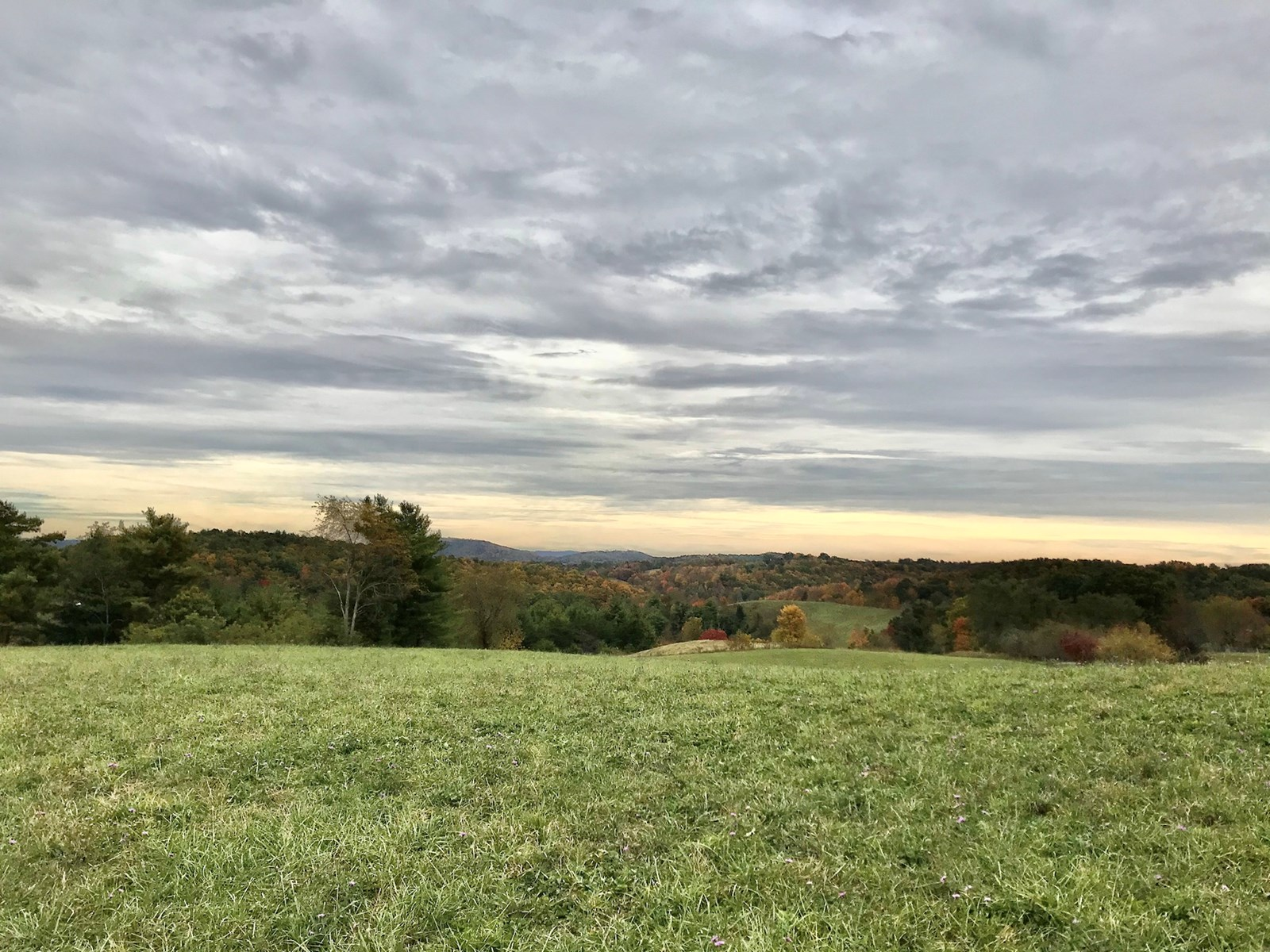 Farm for Sale in Indian Valley VA!
