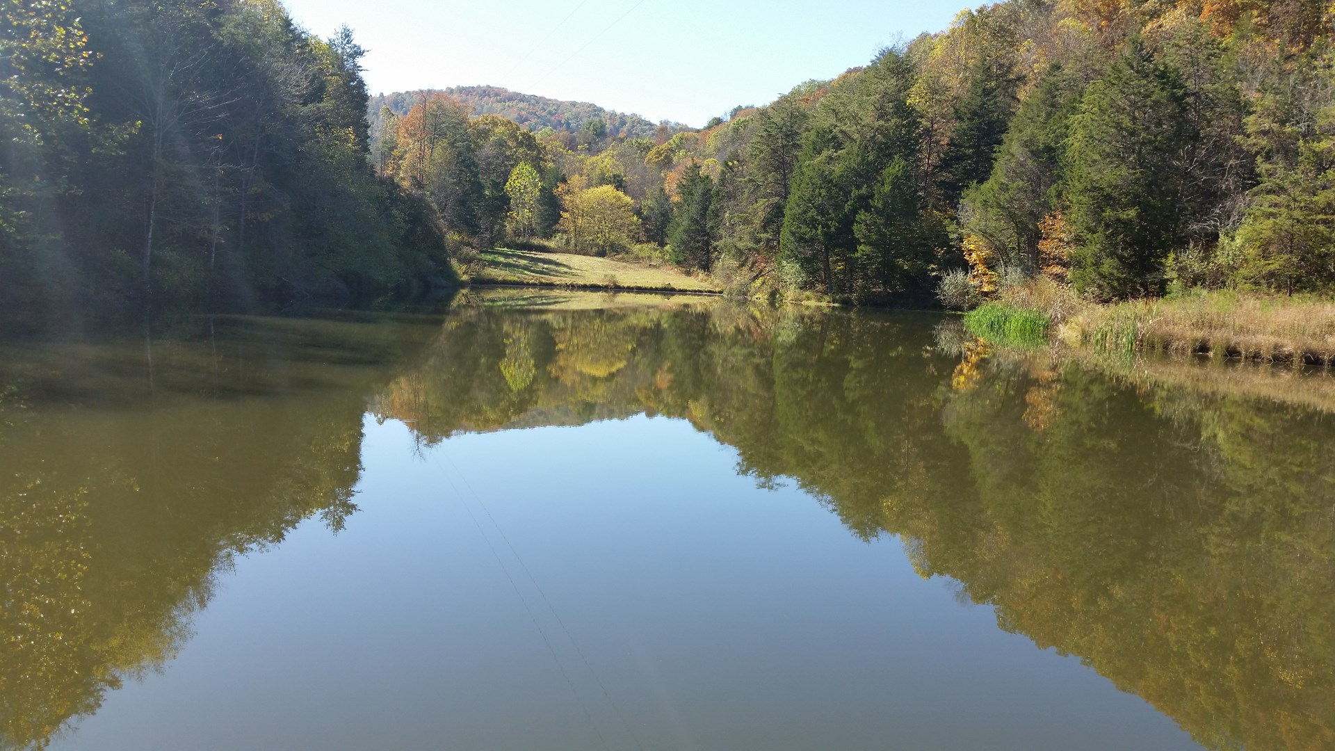 Over 400 acres of WV land.....fields, creeks, ponds, woods