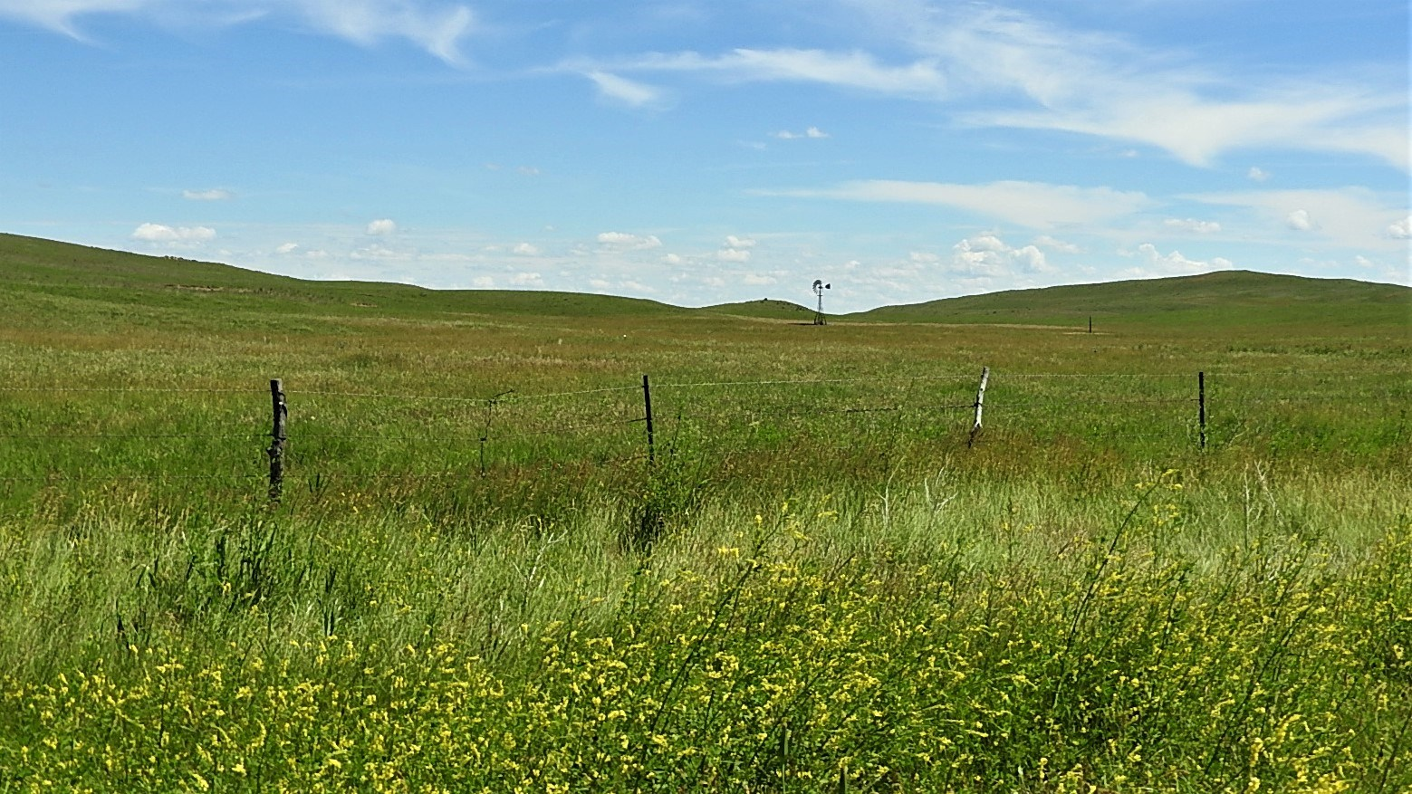 NEBRASKA SANDHILLS RANGELAND AND ELK BREEDING PASTURE