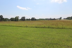 COMMERCIAL LAND FOR SALE IDABEL OKLAHOMA MCCURTAIN COUNTY