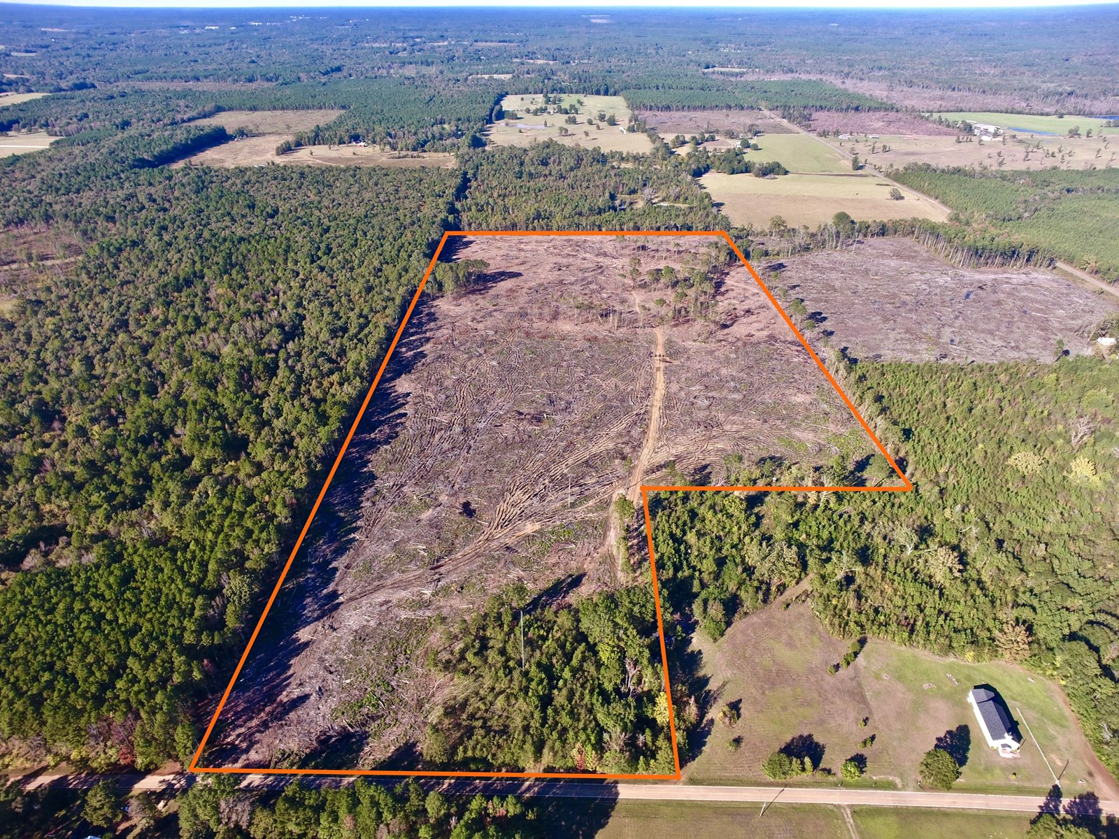 WEBSTER PARISH 70 ACRES - SAREPTA, LA