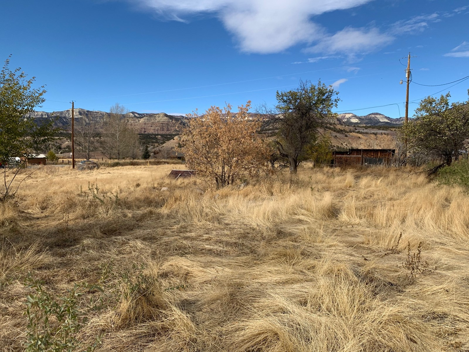 Prime Building Lot with Well for Sale in Colorado
