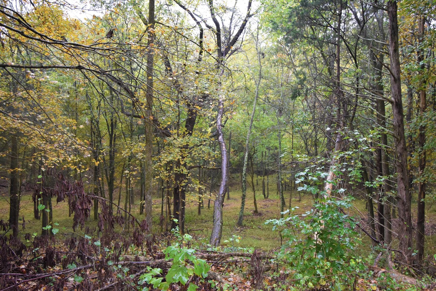 Building Land for Sale Decaturville TN