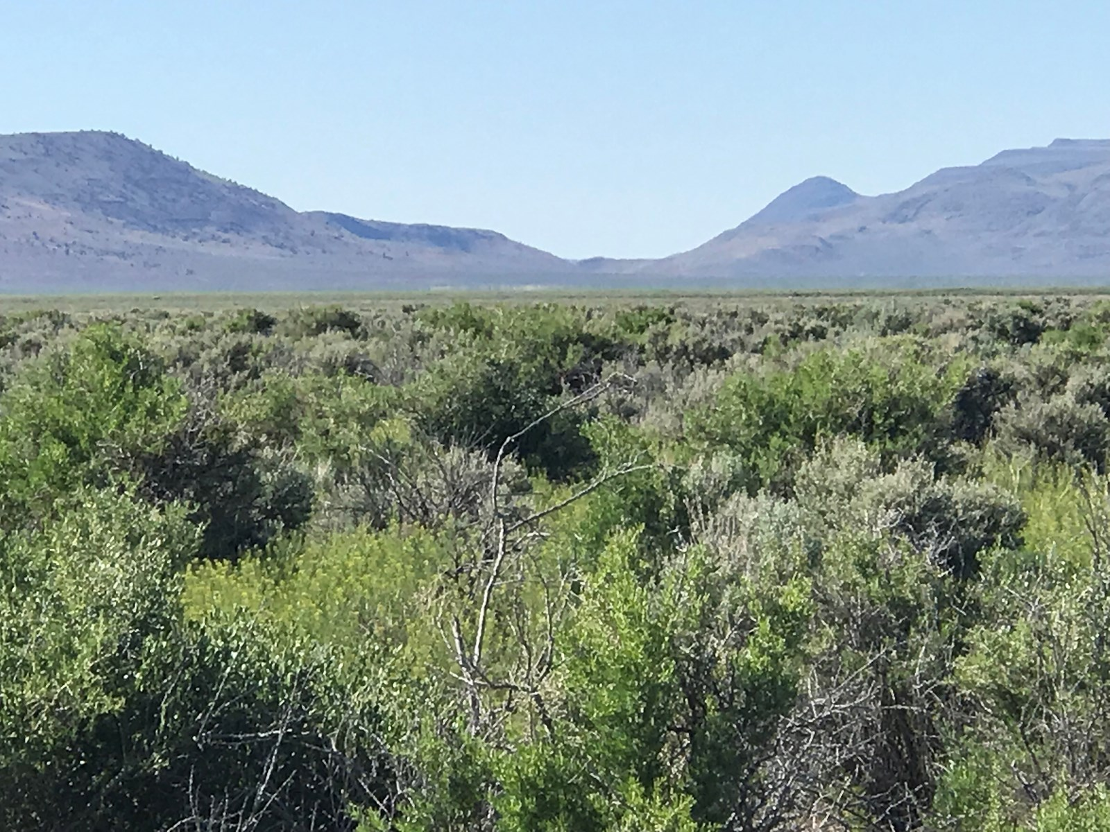 320 Acres Land for Sale, Duck Lake, Washoe, Nv.
