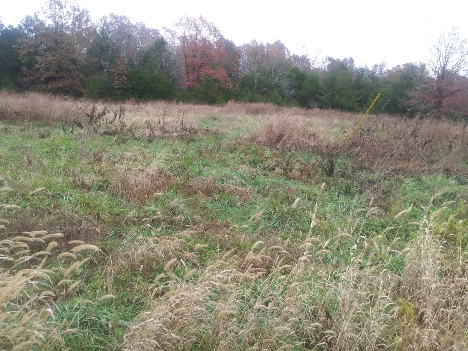 Vacant Land for Sale in Baxter County Arkansas