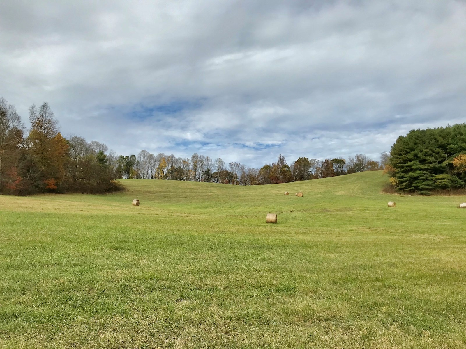 Gorgeous Land for Sale with Views in Floyd VA!