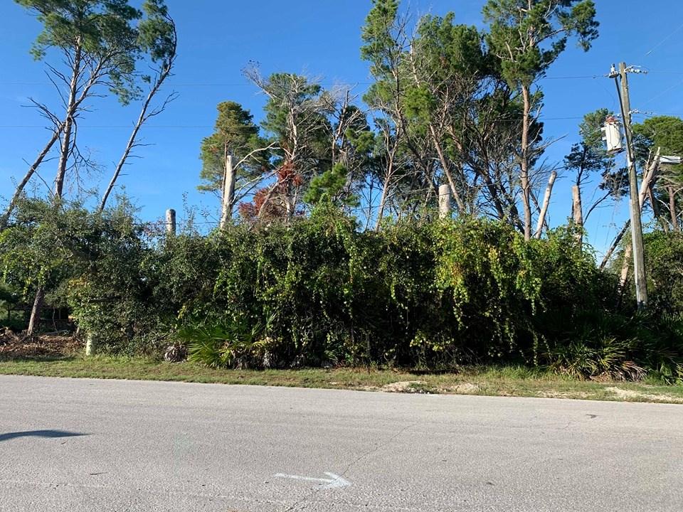 CEDAR KEY FLORIDA COASTAL PROPERTY FOR SALE