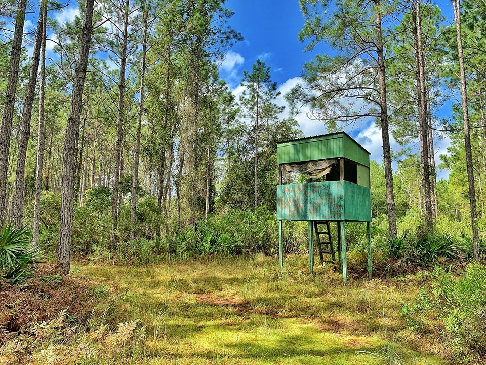 NORTH FLORIDA HUNTING TRACTS FOR SALE