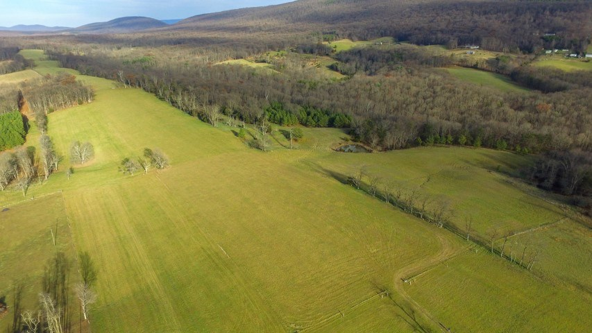 Beautiful 85+ Acres!!