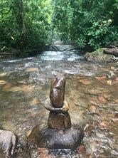 120.22 acres Balsam, Native Trout water for Sale, Jackson Co