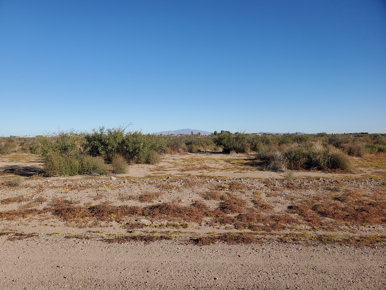 Acreage for sale in Deming NM