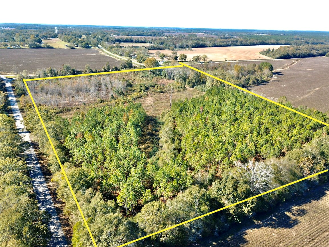20 +/- Acres of land for sale in Black, Alabama