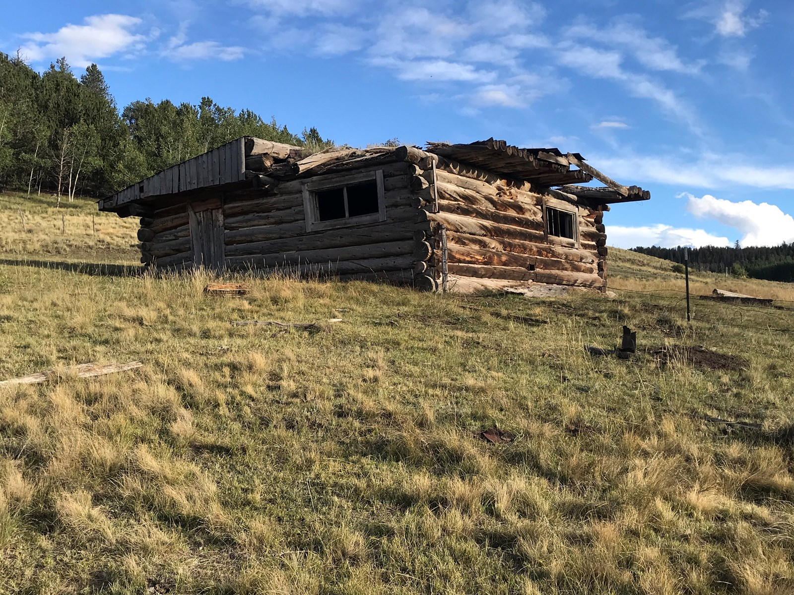 Colorado Mountain/ Ranch/ Hunting Land for Sale near Hartsel