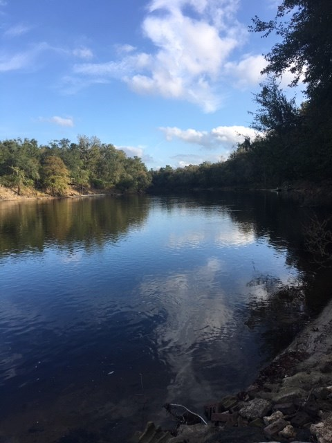 Beautiful River front property on the Suwannee River!!