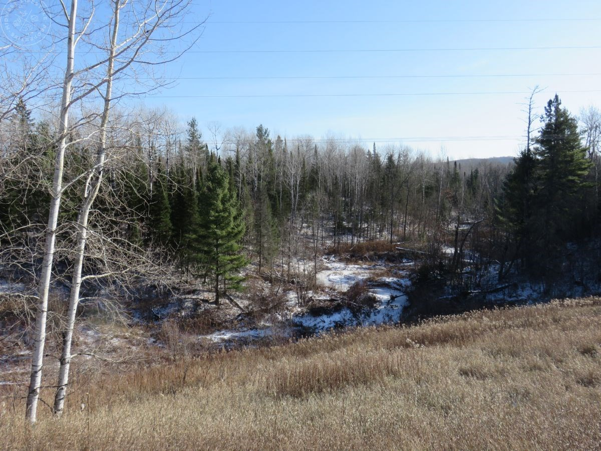 Large Tract of Multi-Use Land in Douglas County WI