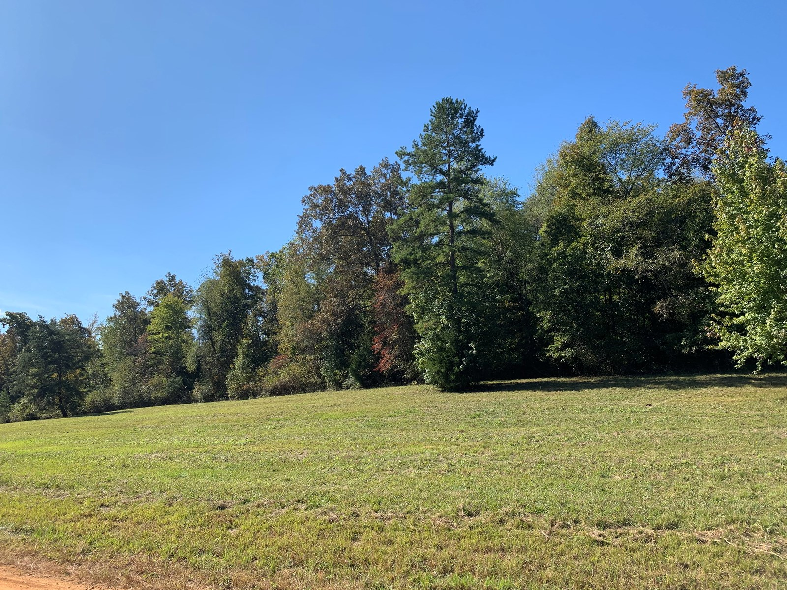 Building Tract In Southern Tennessee!