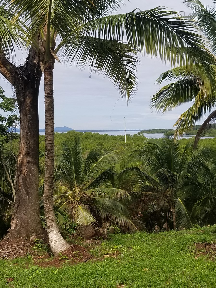 Elevated land with deep water access Bocas del Toro Panama