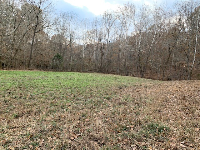 Land For Sale in Primm Springs, TN