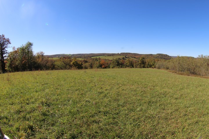 90.5 ACRES OF LAND FOR SELL IN PATRICK COUNTY, VIRGINA