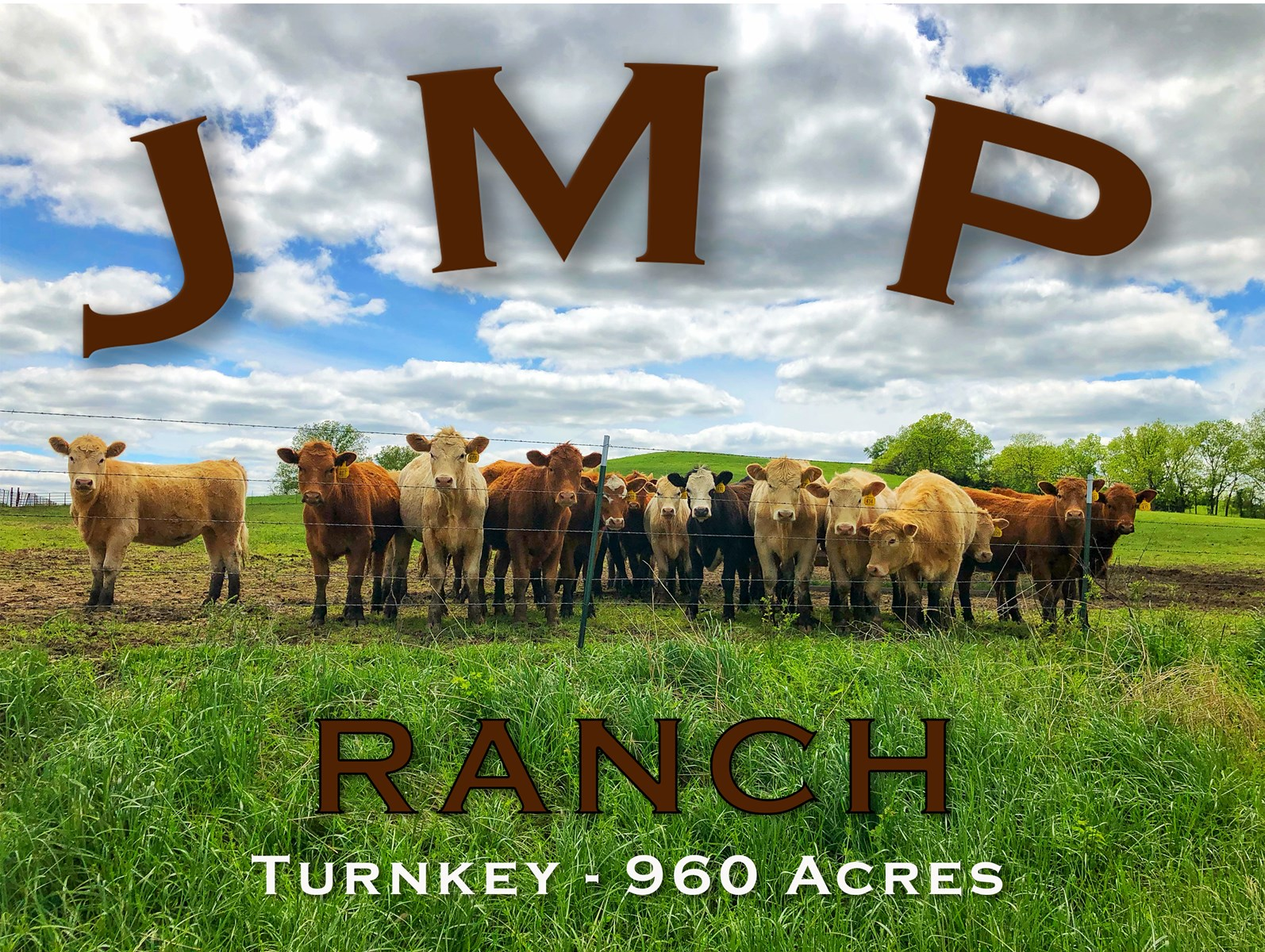 Turn - Key Cattle Ranch with Whitetails & Waterfowl For Sale