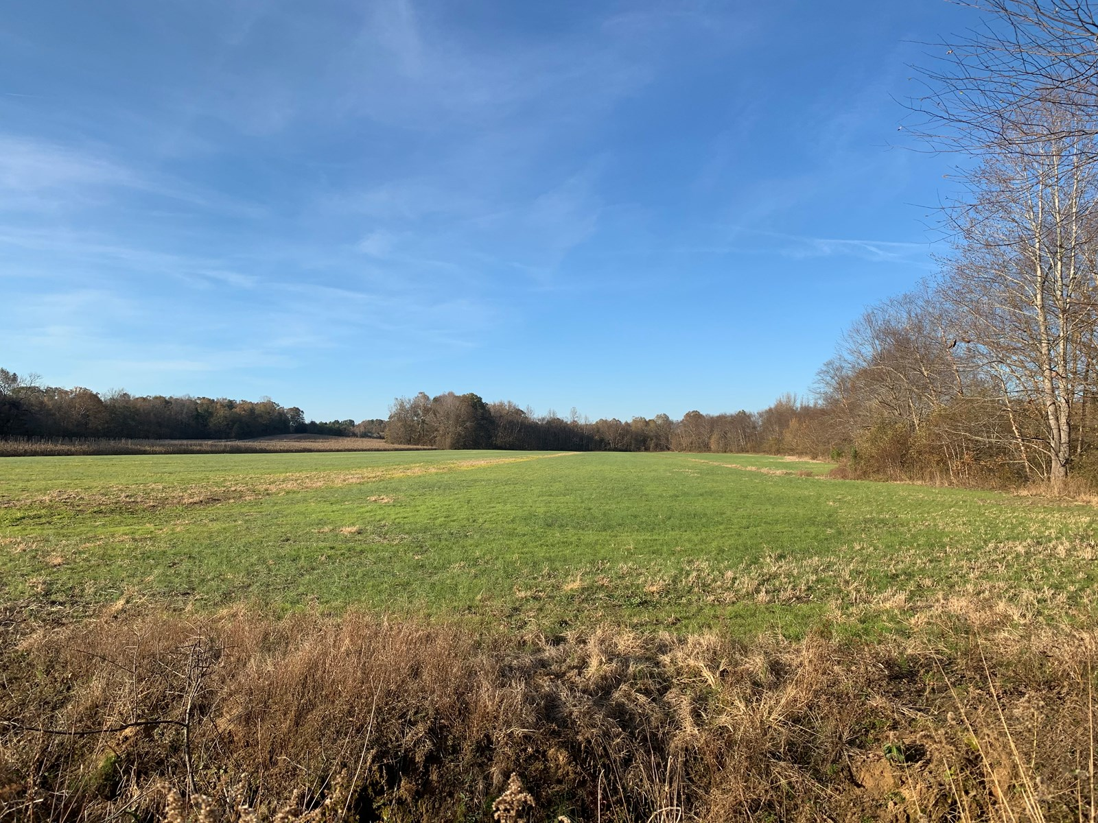 Excellent Hunting Land for sale in TN