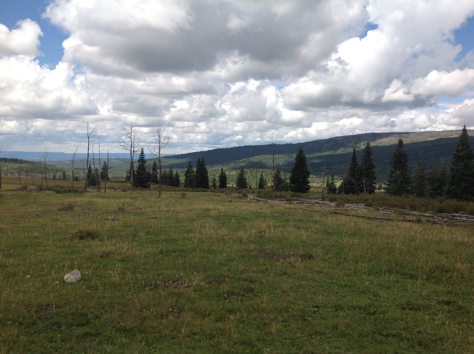 High Mountain Ranch for Sale with wildlife and views