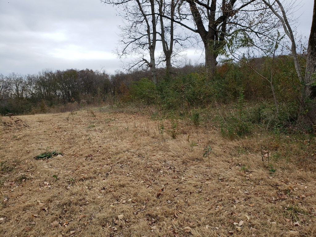 Mount Pleasant, Maury County Tennessee, Land Only for Sale