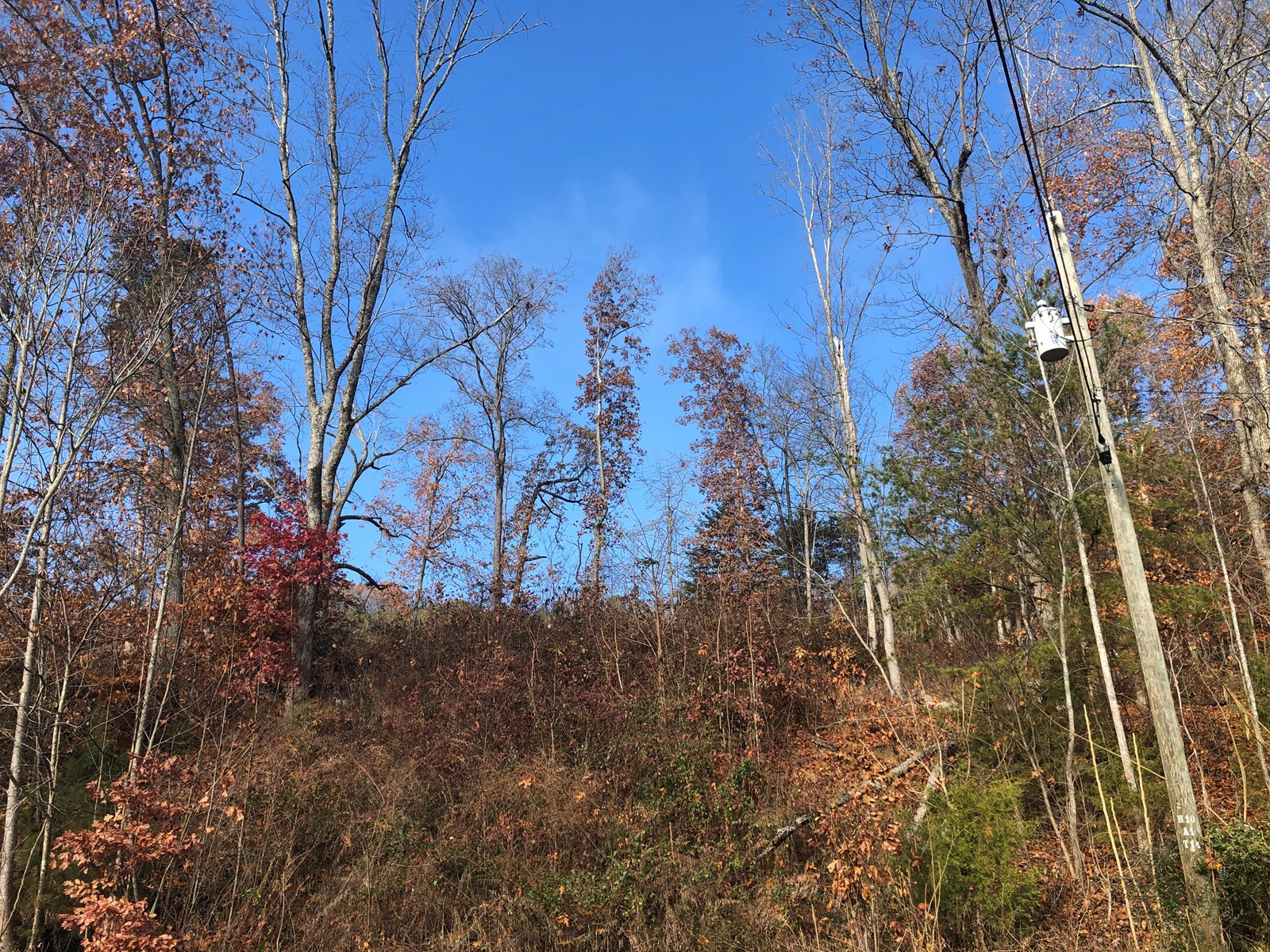 .68 Acre Lot For Sale in Rogersville, TN
