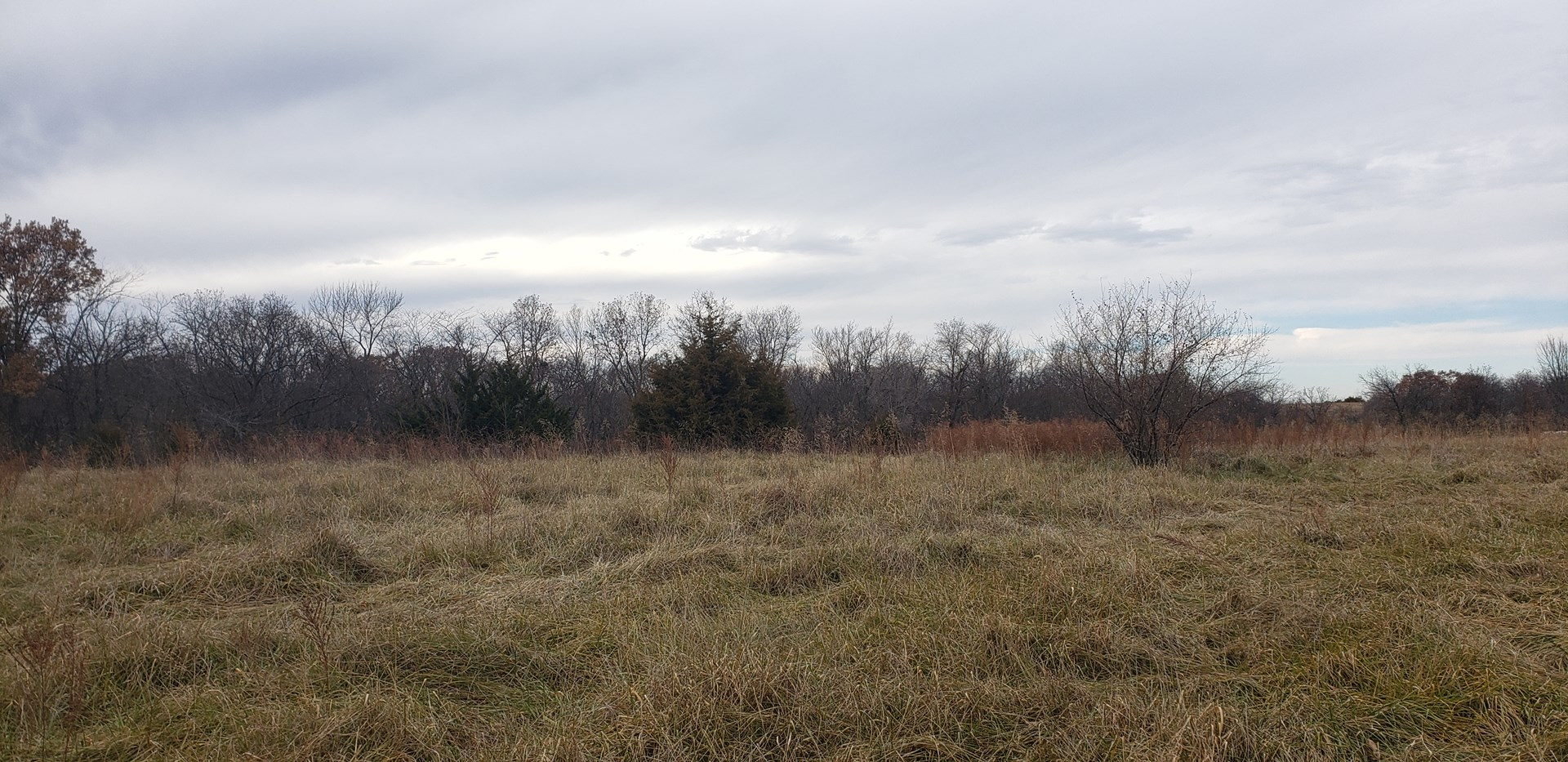 Multi-Use Land For Sale in Livingston County, Missouri