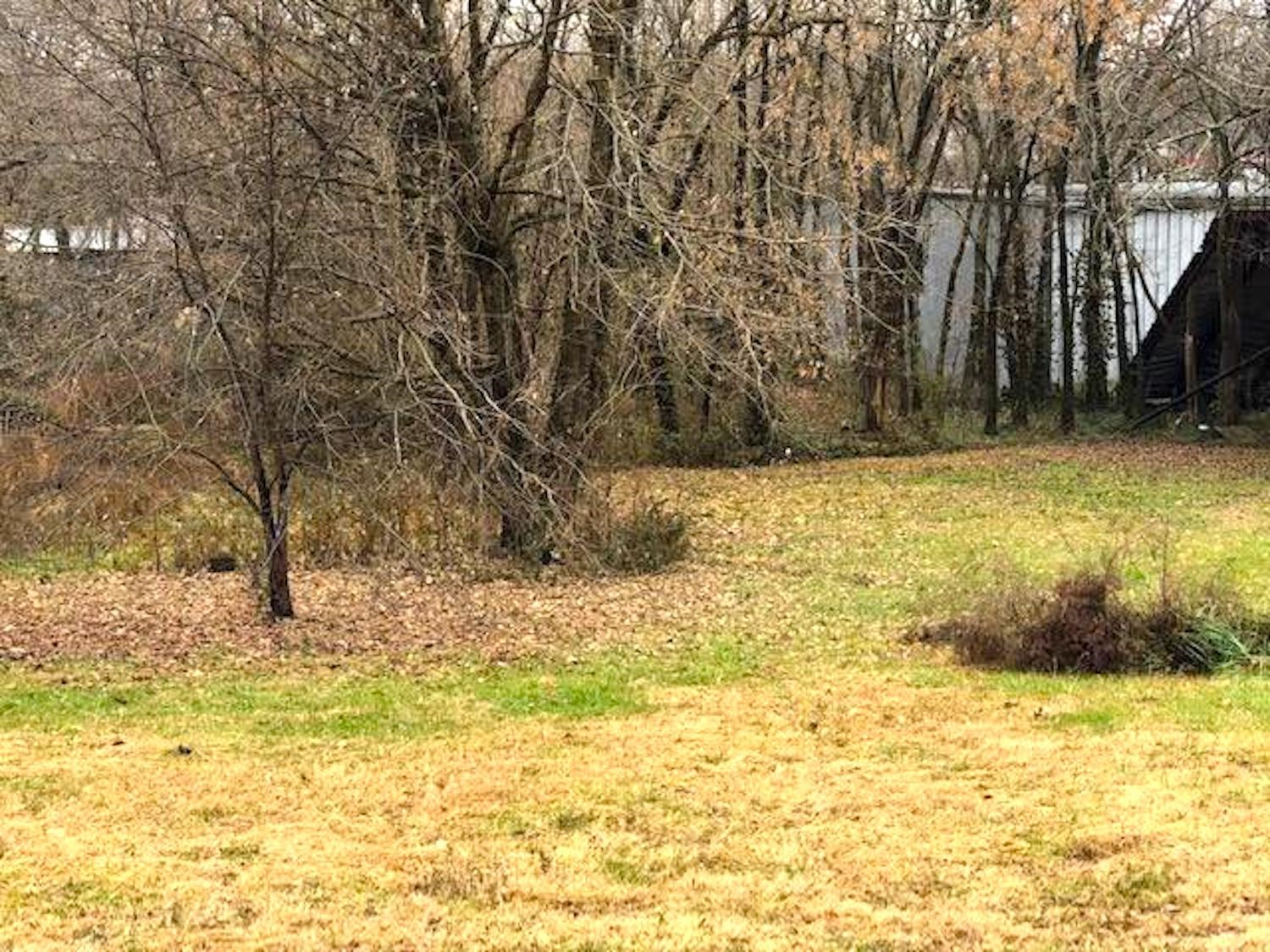 Residential Lots for Sale in Alton, MO