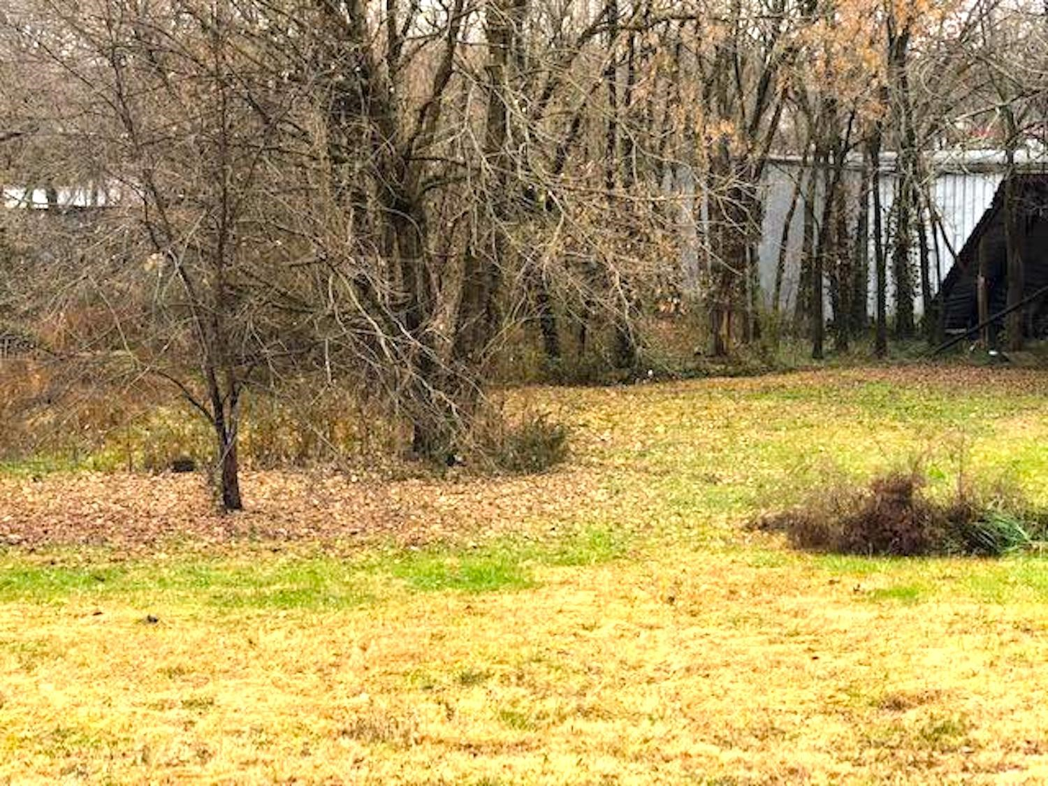 Residential Lot for Sale in Alton, MO