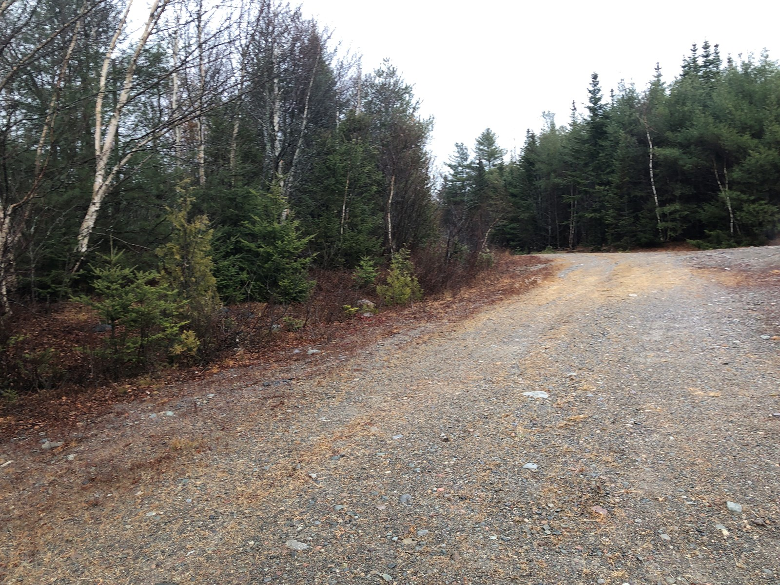 Recreational Land For Sale in Whiting, Maine