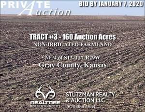 GRAY COUNTY KS - TR #3 - 160 ACRE NON-IRRIGATED FARMLAND